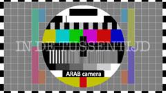 Arab Camera filmfestival  (2013)